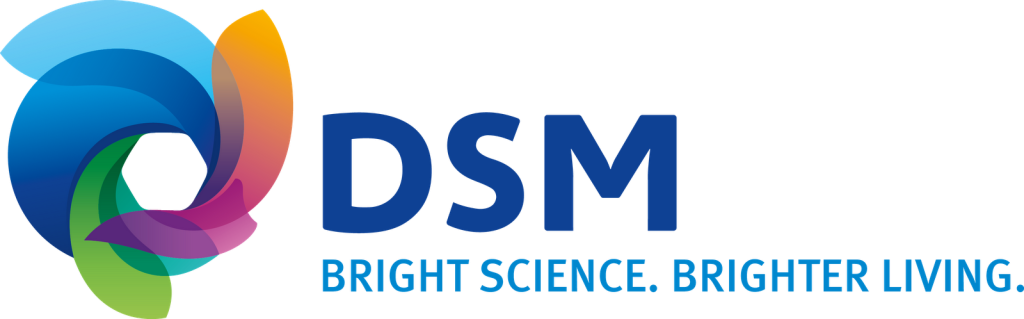 DSM_MasterLogo_FullColor